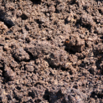 Horse manure bedding compost