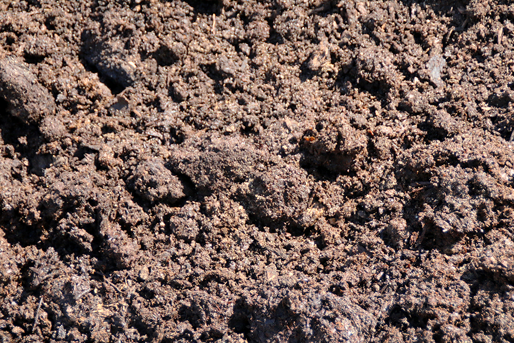Keleny Horse Manure Bedding for Fall Mulching