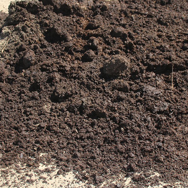 Horse-Manure-Bedding-Compost
