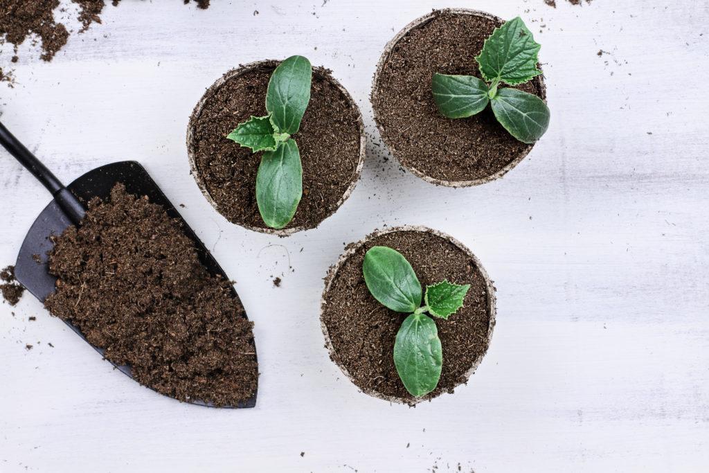 Biodegradable gardening